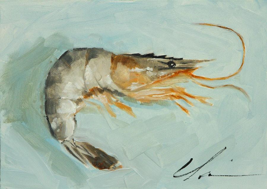 """Shrimp"" original fine art by Clair Hartmann"