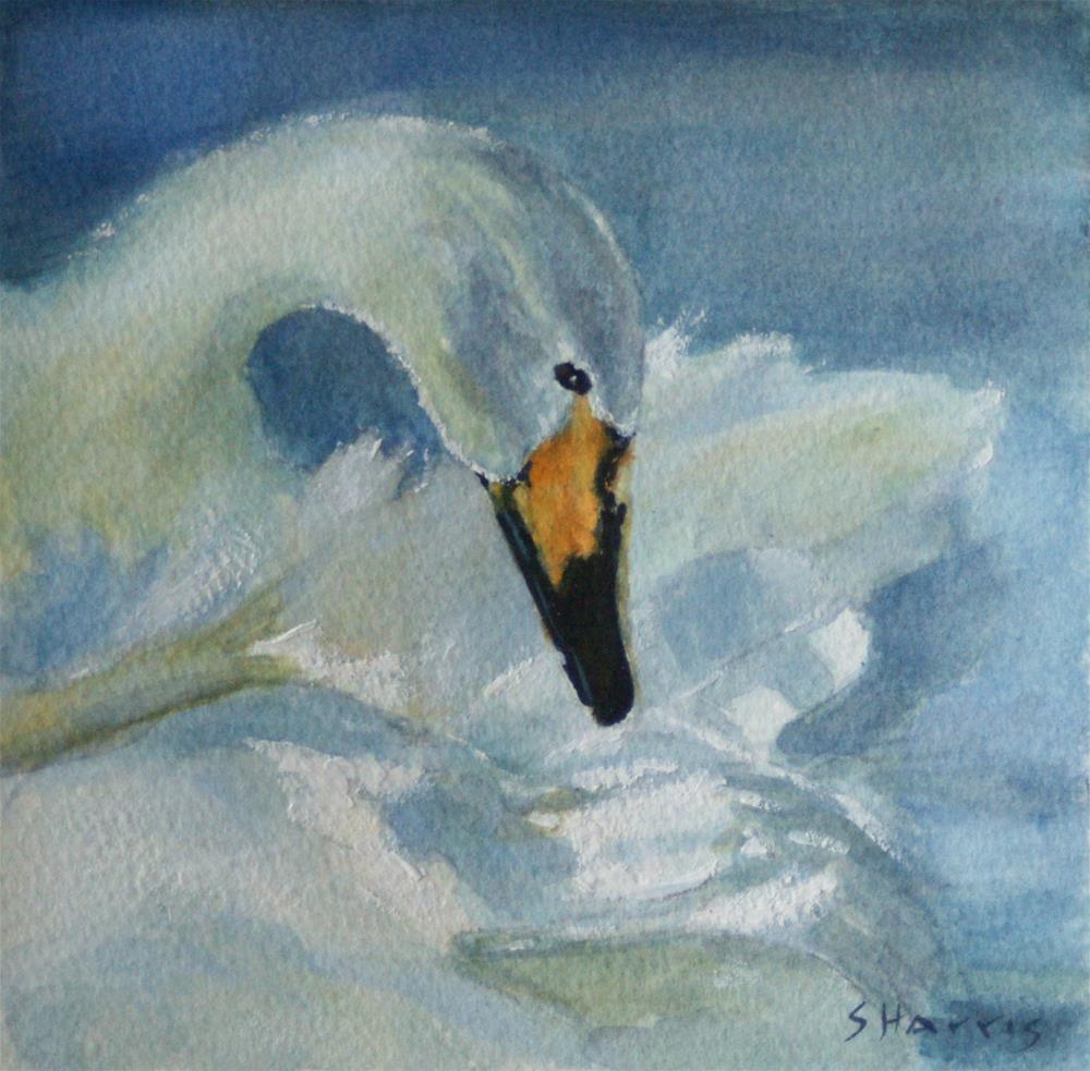 """""""Preening"""" original fine art by Sandra L Harris"""