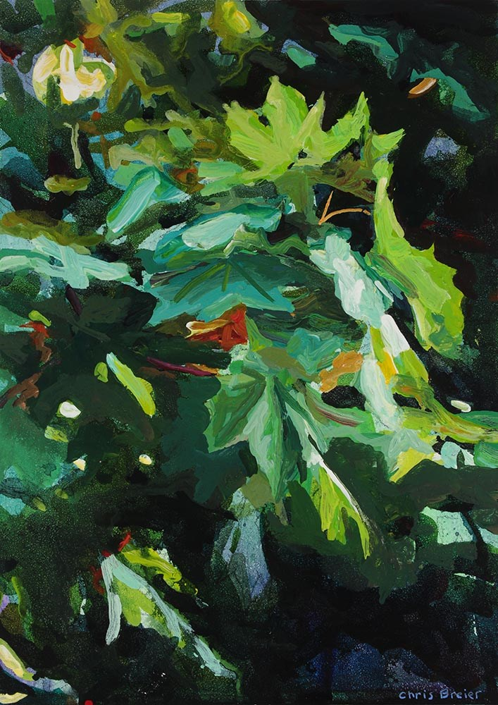 """Maple"" original fine art by Chris Breier"