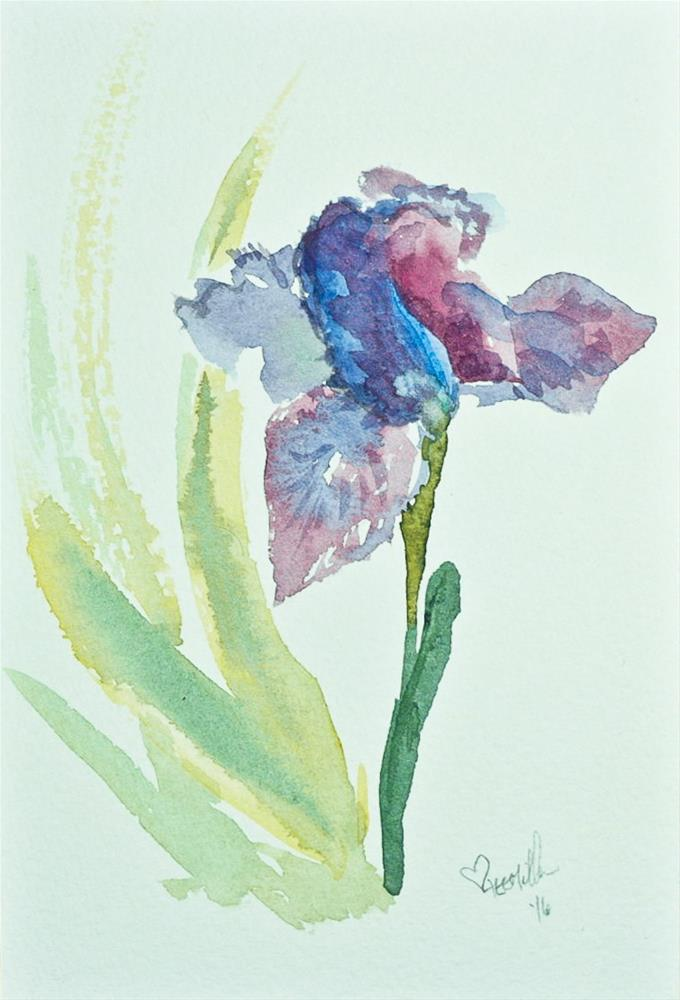 """Daily Study #159 - Iris"" original fine art by A.E.E. Miller"
