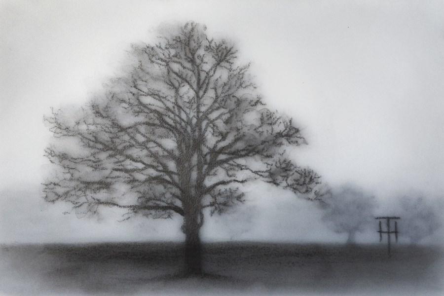 """Twilight Tree"" original fine art by Terri Heinrichs"