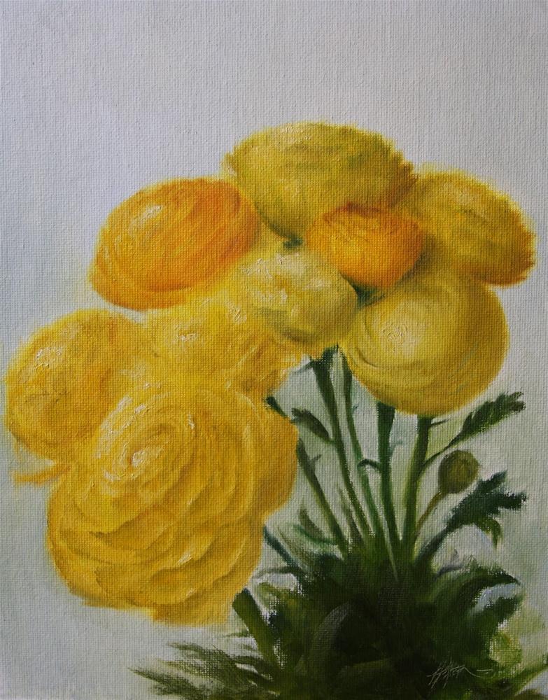 """""""Yellow Ranunculus"""" original fine art by Jonathan Aller"""