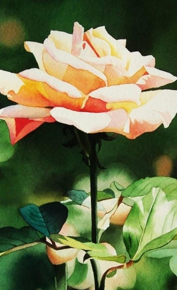 """""""Thirty Paintings in Thirty Days ~ Day Eleven"""" original fine art by Jacqueline Gnott, TWSA, WHS"""