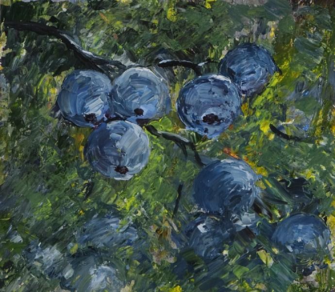 """""""Blueberries"""" original fine art by Anna Vreman"""