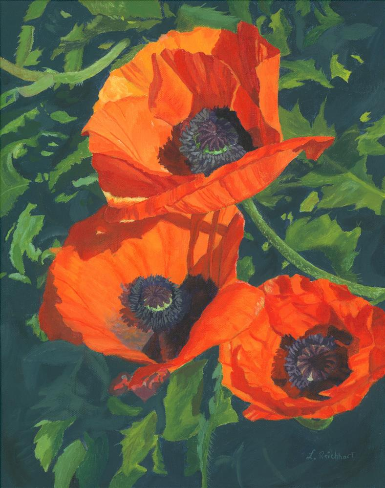 """Red Poppies Three"" original fine art by Lynne Reichhart"
