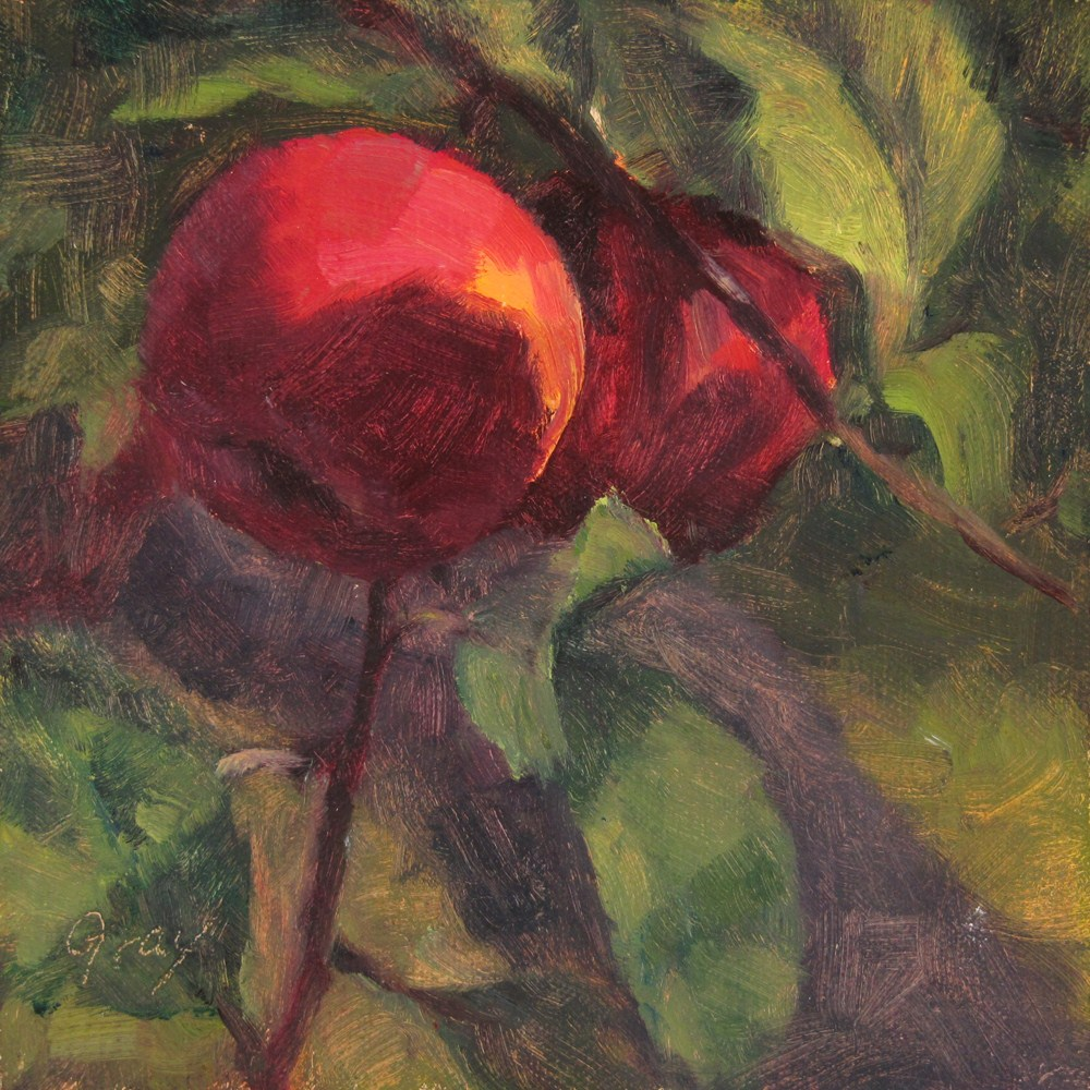 """""""Orchard Series - Red Apples"""" original fine art by Naomi Gray"""