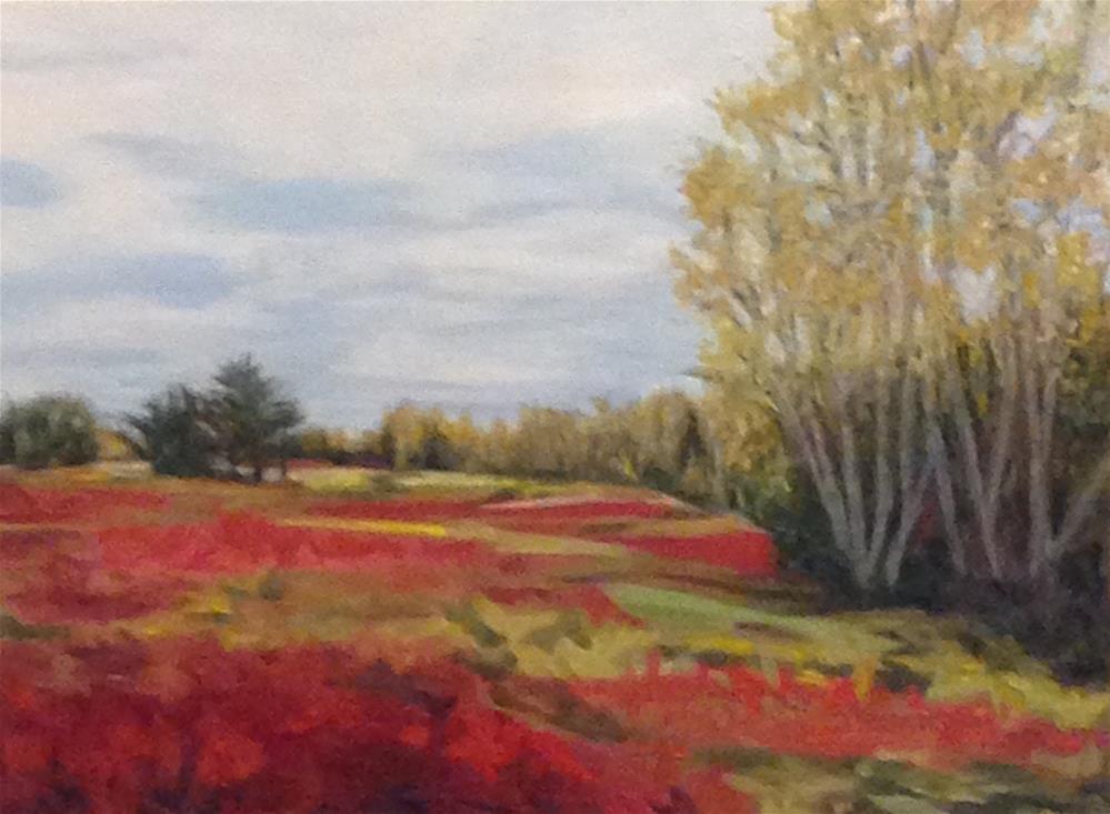 """Betsy's Barrens"" original fine art by Karen Collins"