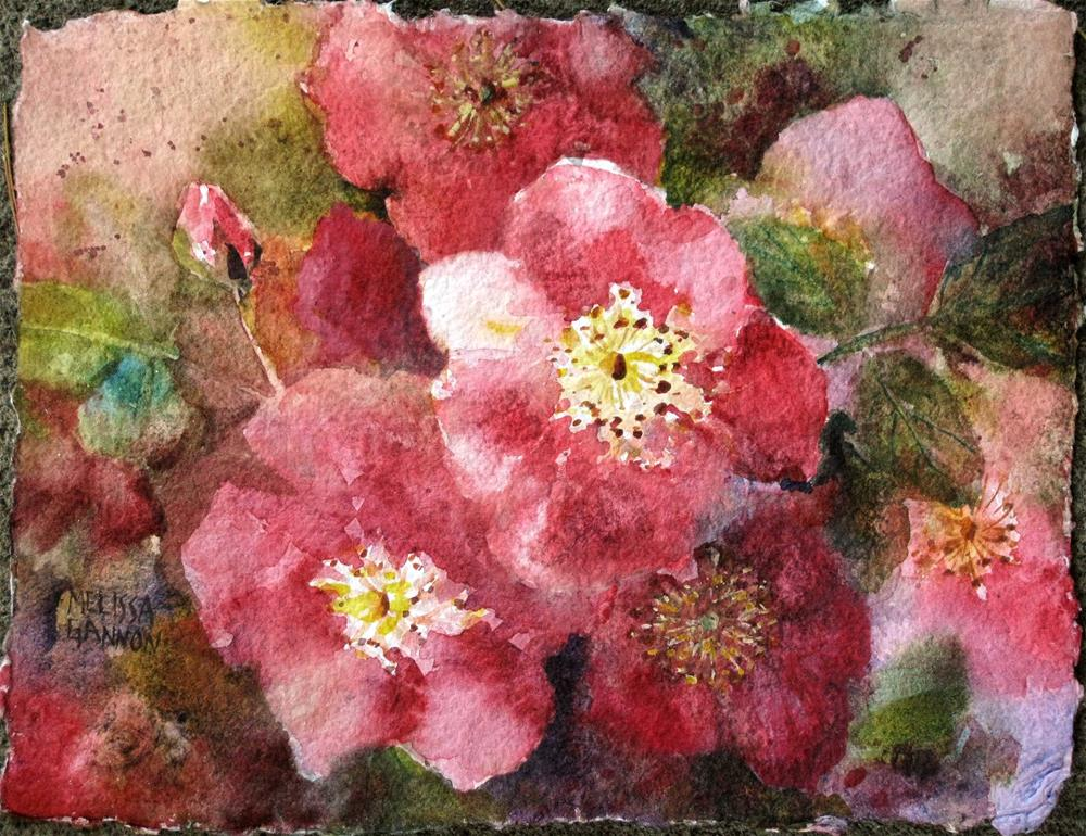 """The Glow of Roses in the Spring"" original fine art by Melissa Gannon"