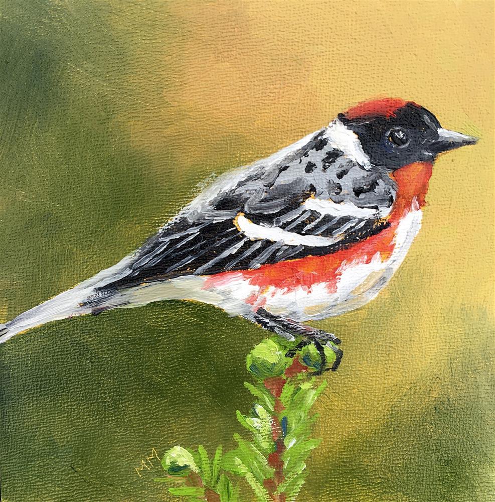 """Bay Breasted Warbler"" original fine art by Maria McNitt"