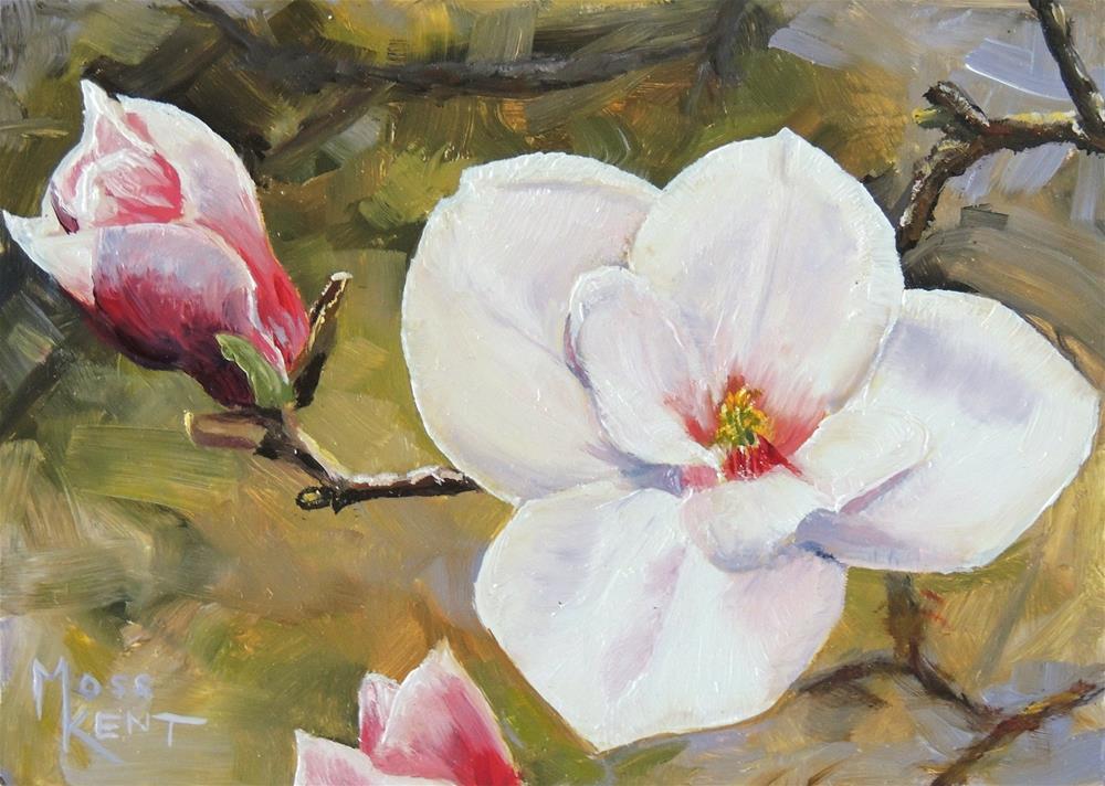 """""""Magnolia Blossom"""" original fine art by Moss Kent"""