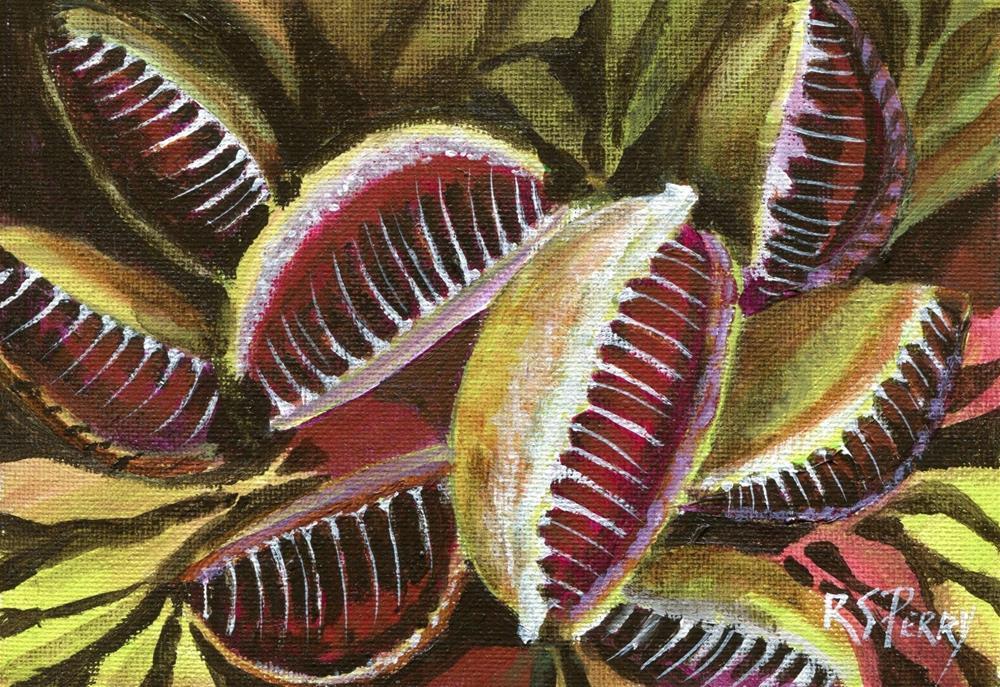 """""""Venus Flytrap, carnivorous plant """" original fine art by R. S. Perry"""