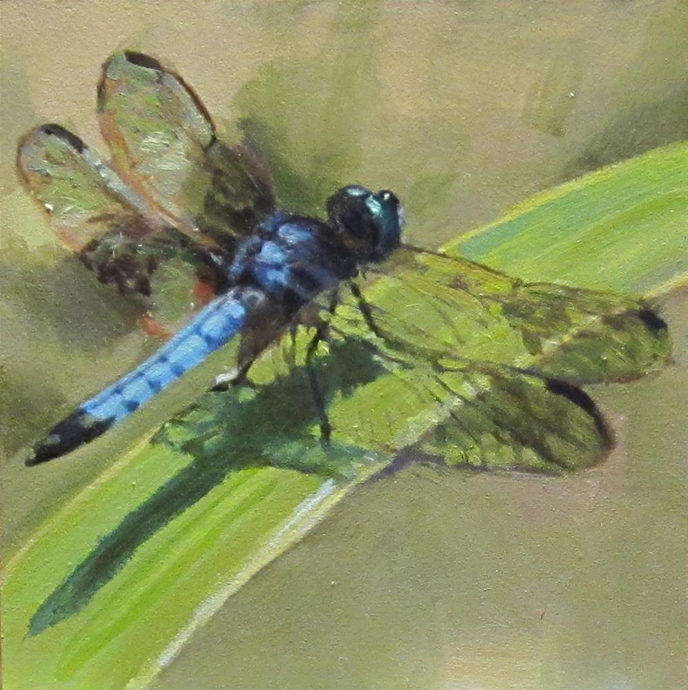 """Dragonfly #3"" original fine art by Kaethe Bealer"