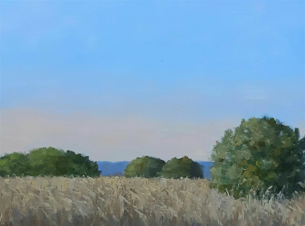 """Dry Summer Grass"" original fine art by Karen Johnston"