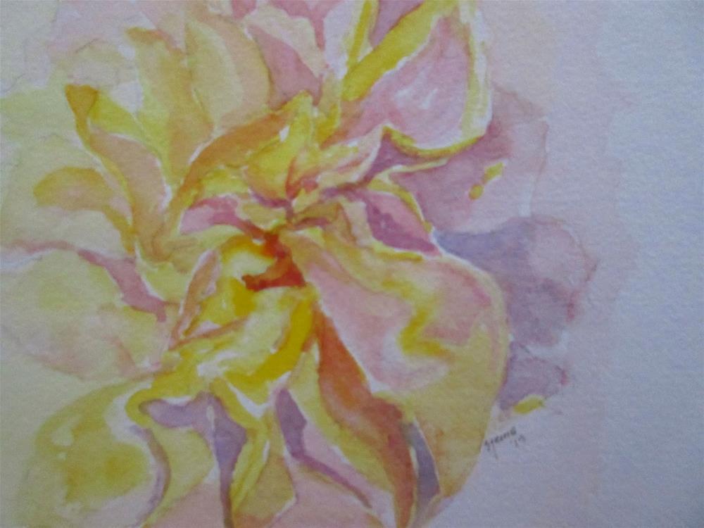 """The Rose"" original fine art by Steinunn Einarsdottir"