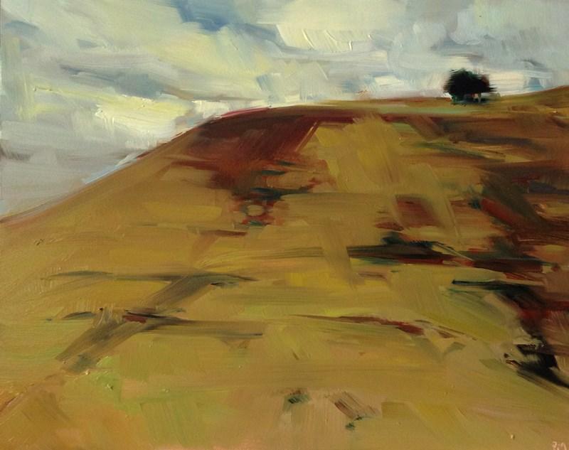 """The Painted Hills of Ochre"" original fine art by Patti McNutt"