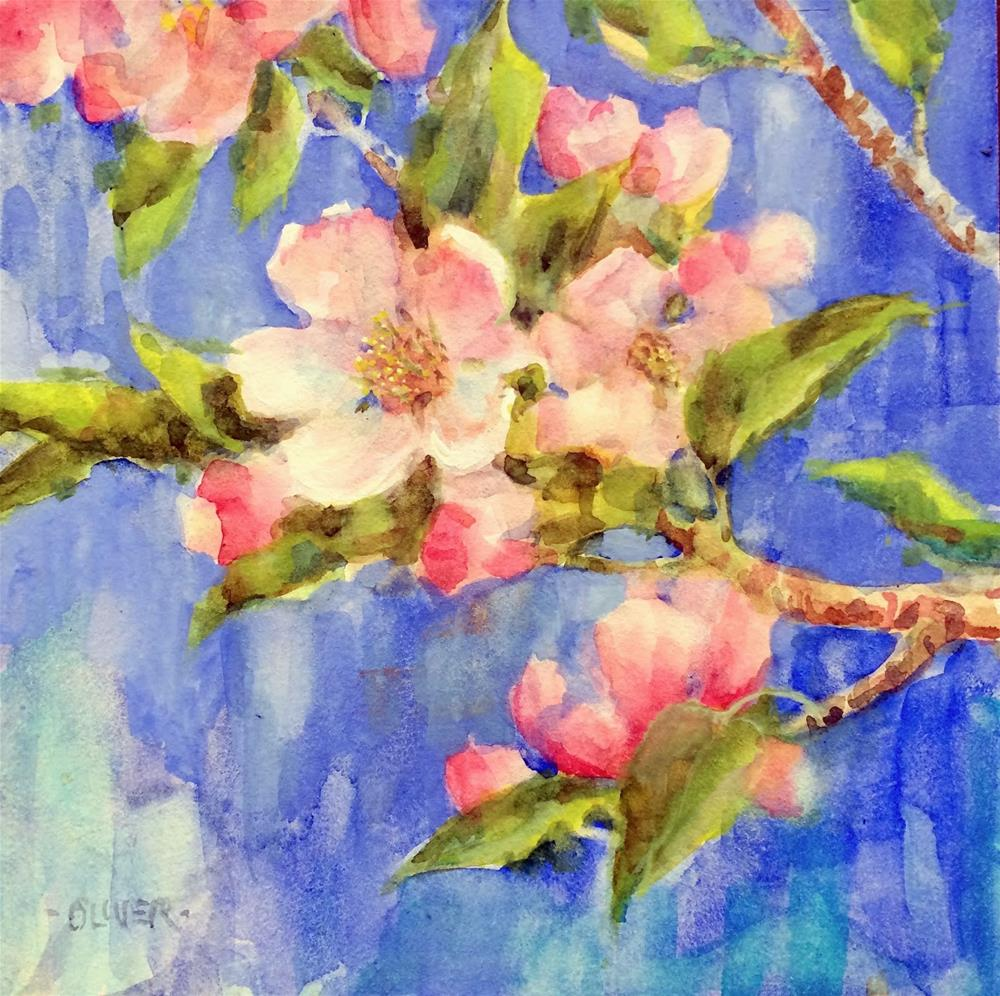 """Apple Blossom Study"" original fine art by Julie Ford Oliver"