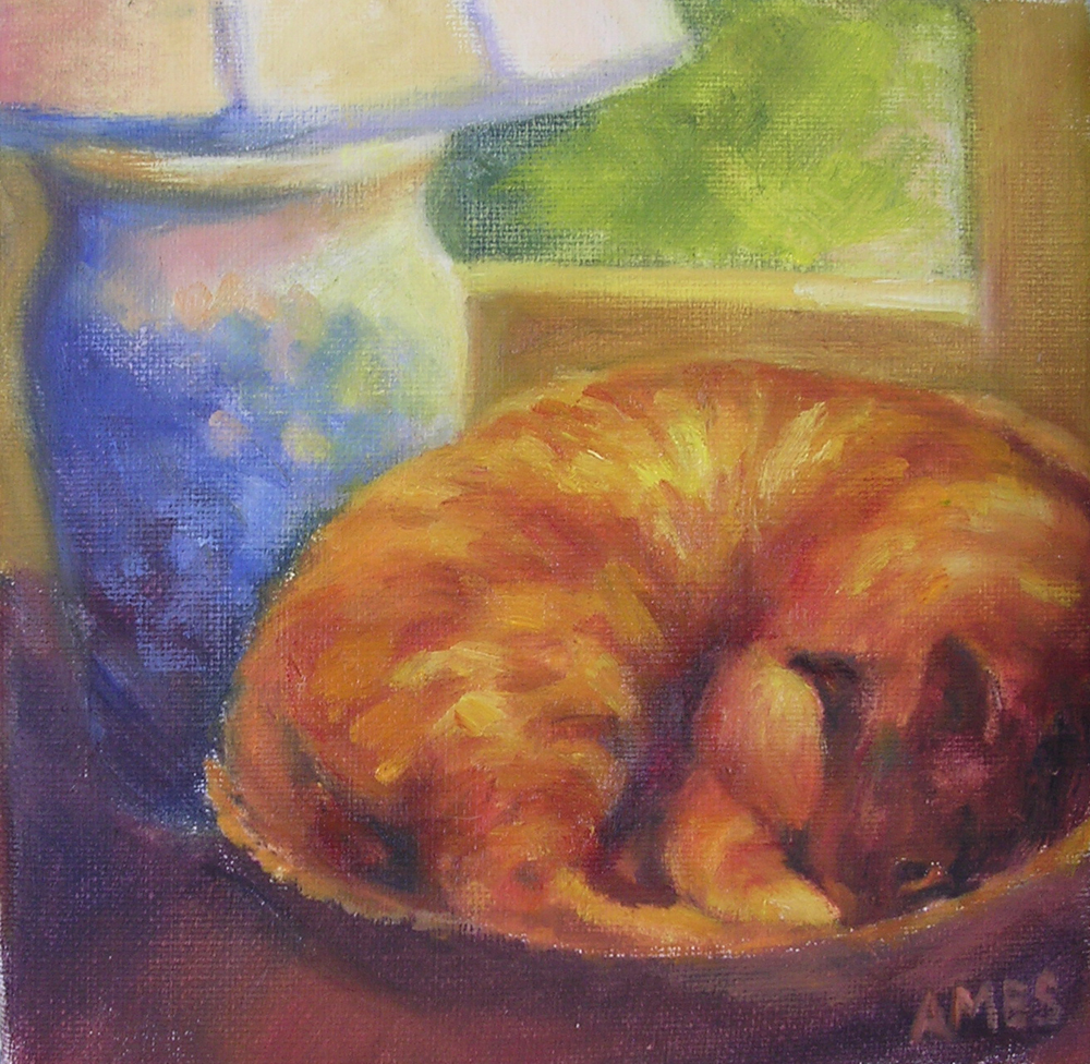 """Cozy Kitty"" original fine art by Debra Ames"