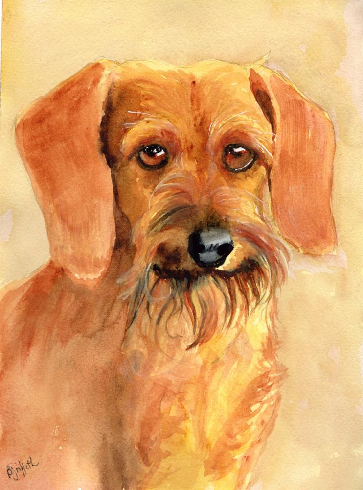 """Wirehaired Dachshund"" original fine art by Bunny Griffeth"