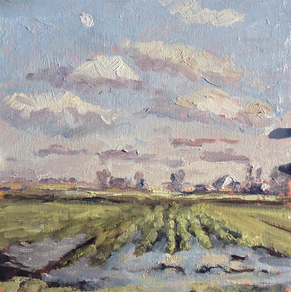 """Flooded Field"" original fine art by Mo Teeuw"