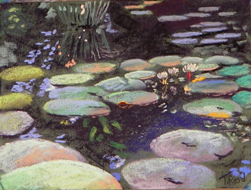 """Lily pond"" original fine art by Toby Reid"