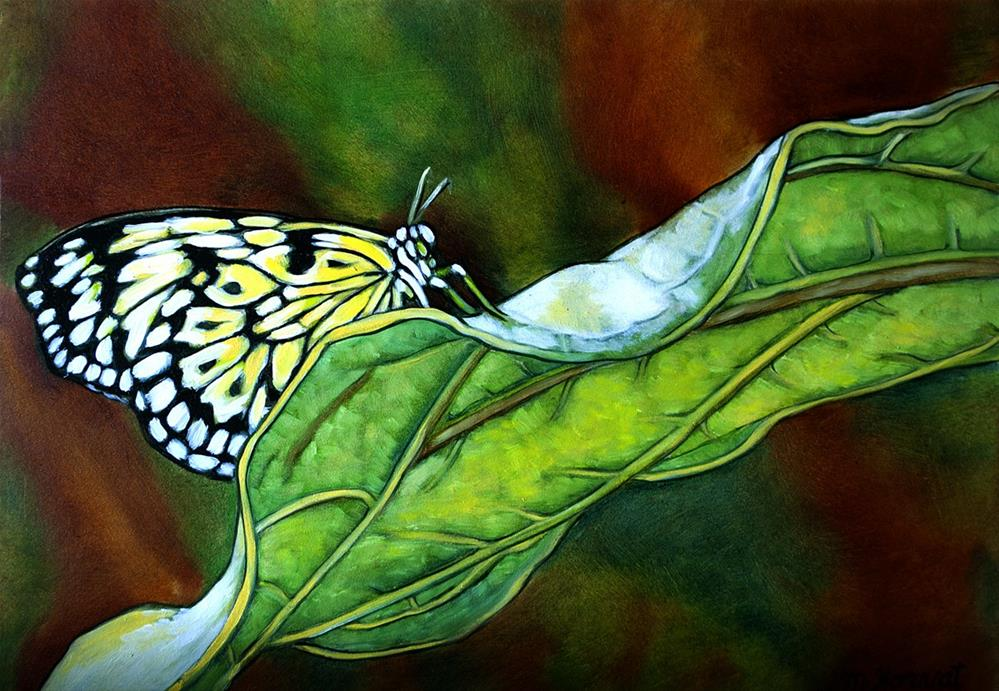 """Butterfly"" original fine art by Margaret Horvat"