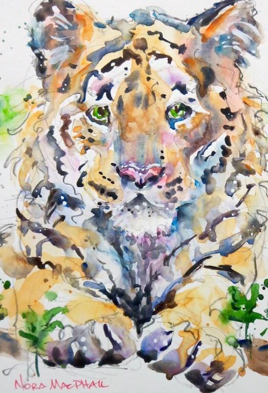 """Tigre"" original fine art by Nora MacPhail"