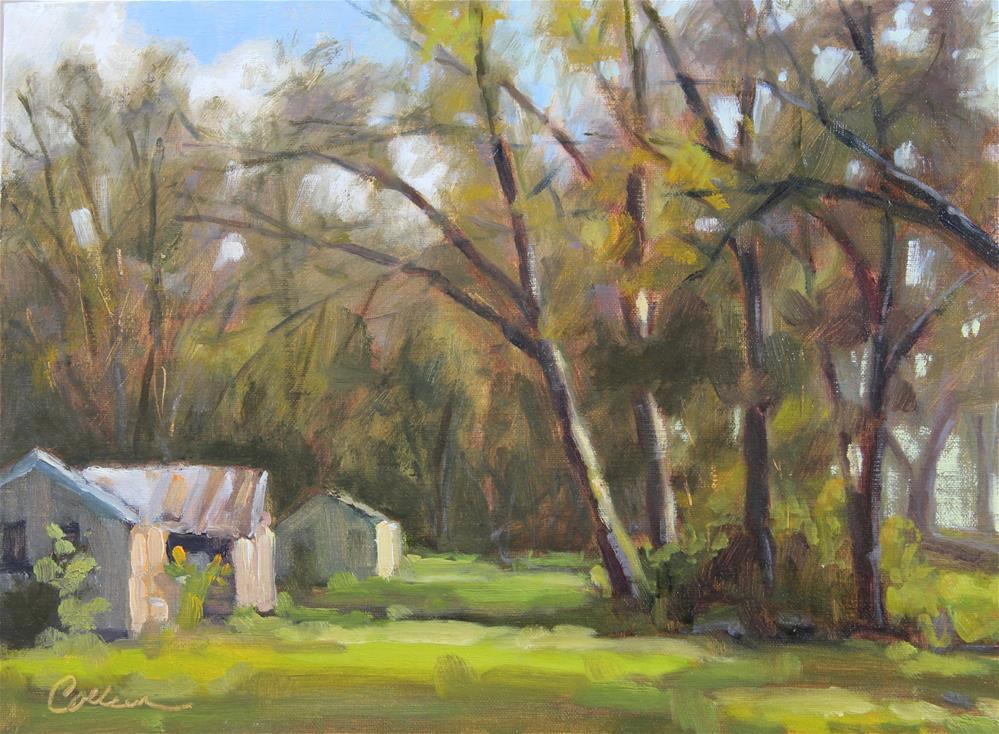 """Outbuildings"" original fine art by Colleen Parker"