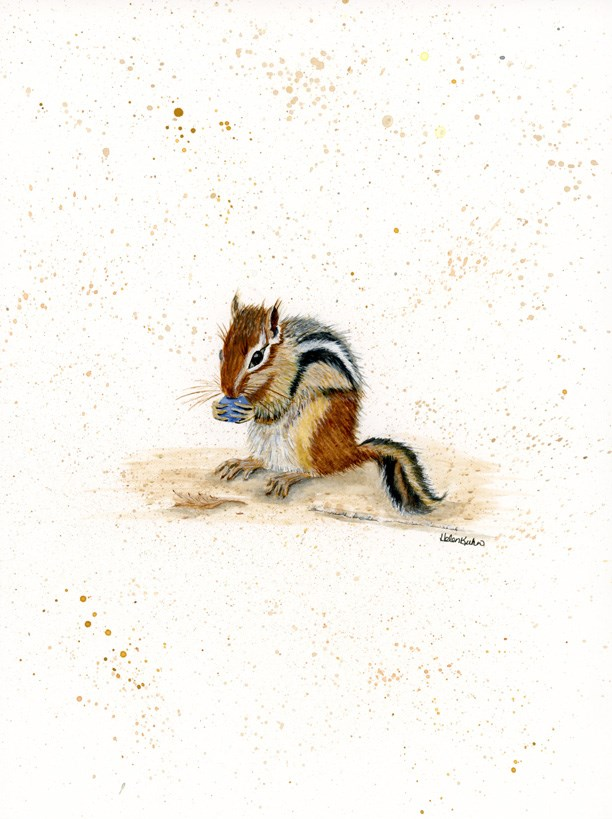 """Chippy"" original fine art by Helen Kuhn"