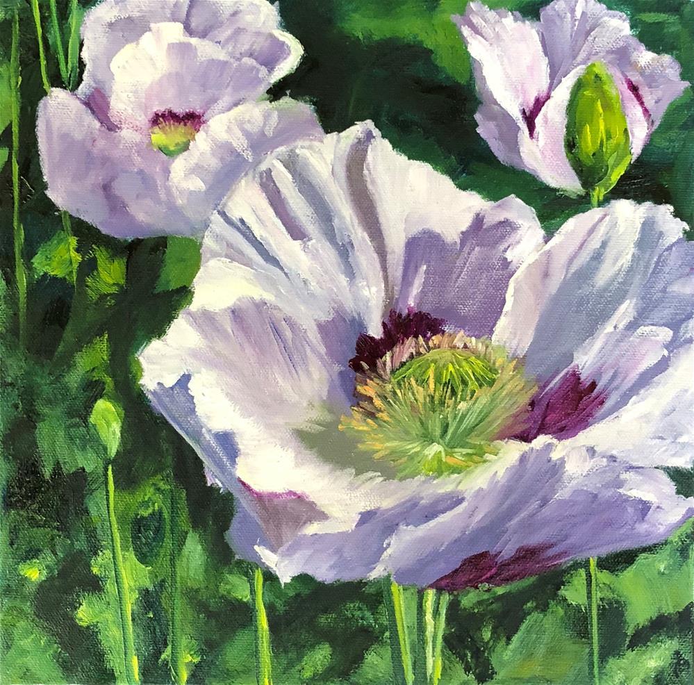 """White Poppy Closeup"" original fine art by Renee Robison"
