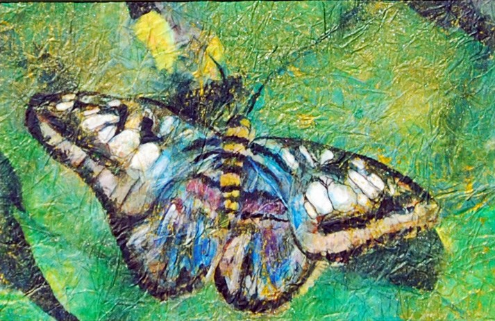 """Butterfly in Blue"" original fine art by Maureen Baker"