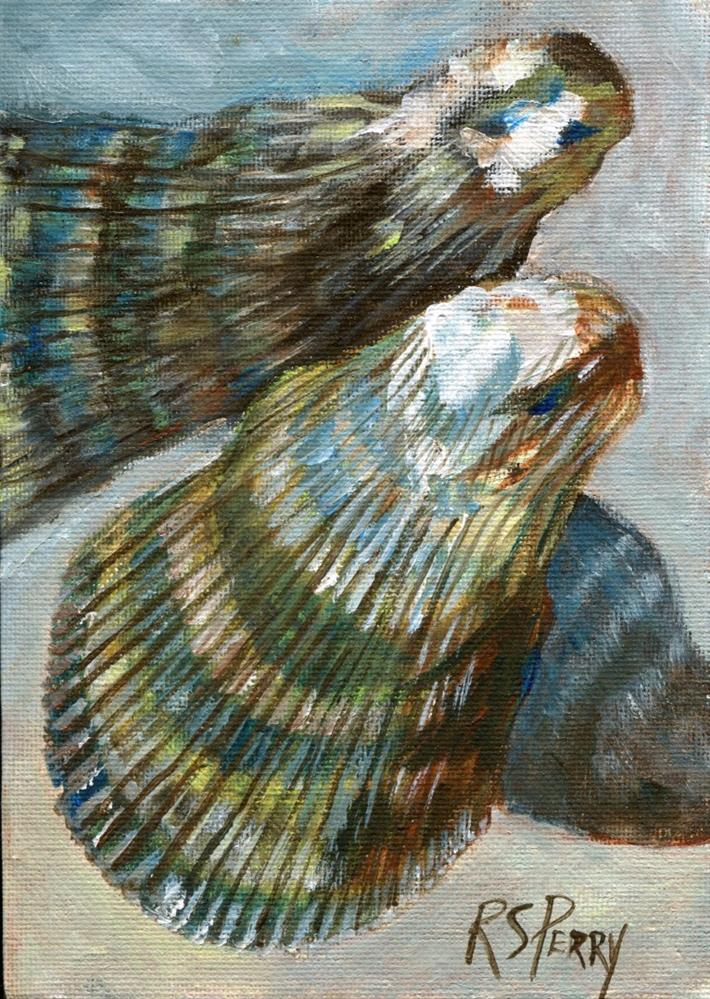 """Atlantic Ribbed Mussel "" original fine art by R. S. Perry"