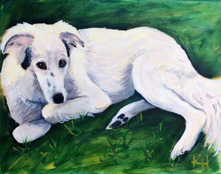 """""""Duncan"""" original fine art by Rachel  Holland"""