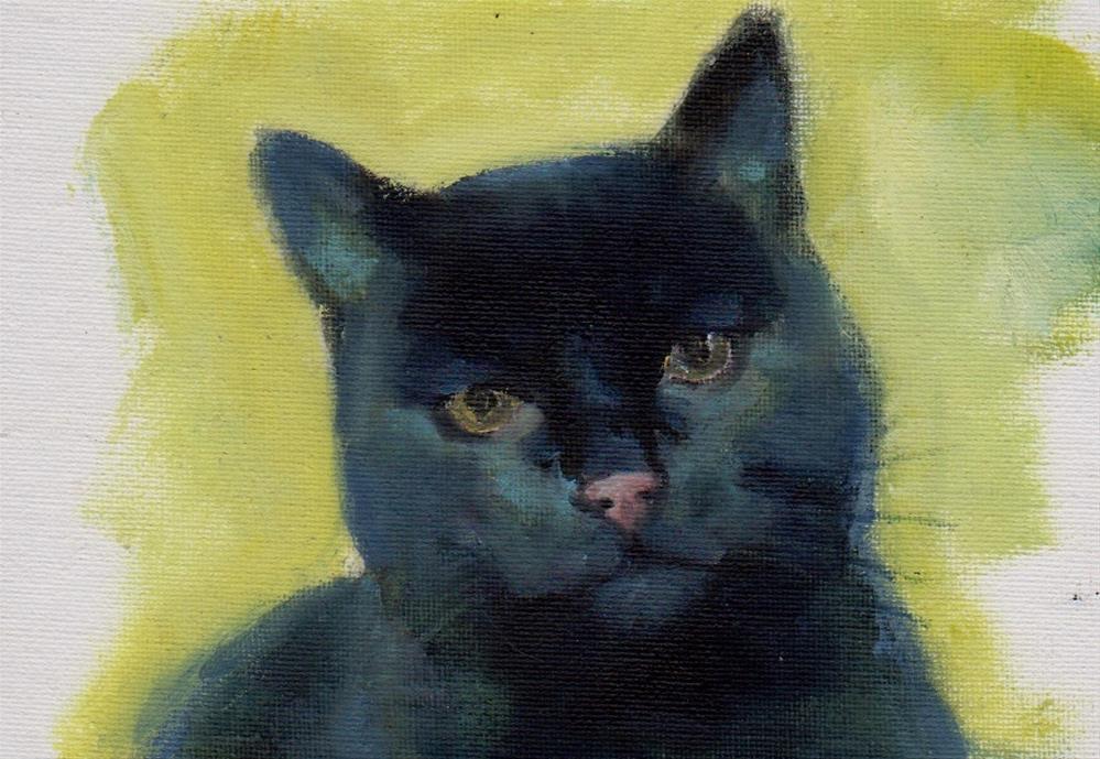 """""""black cat for President"""" original fine art by Mark DeBak"""