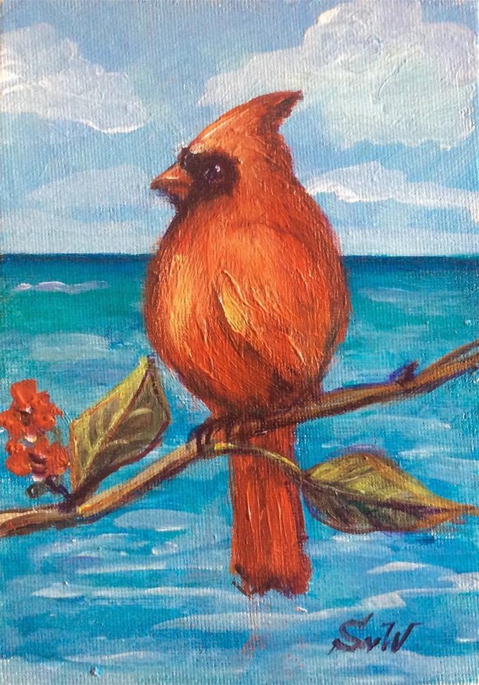 """""""Cardinal bird ,Bermuda"""" original fine art by Sonia von Walter"""