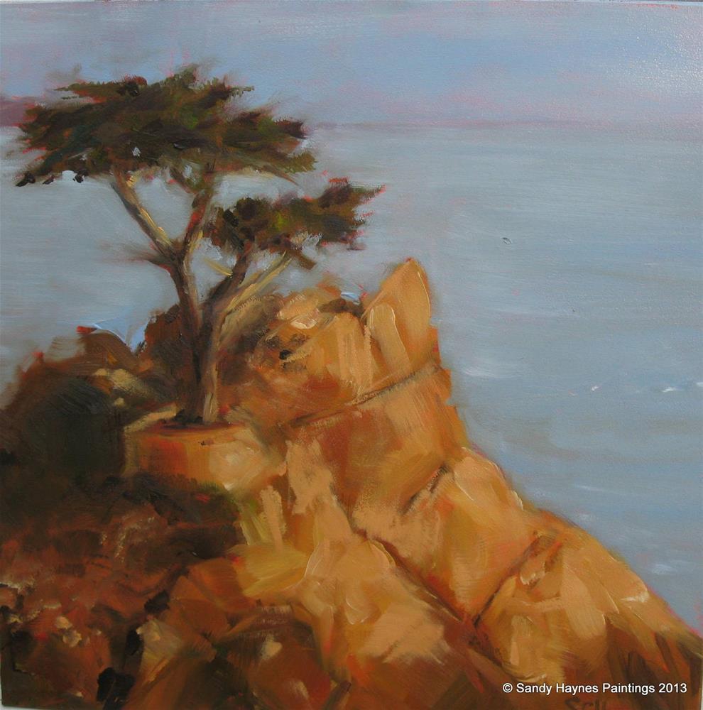 """Lone cypress  #136"" original fine art by Sandy Haynes"