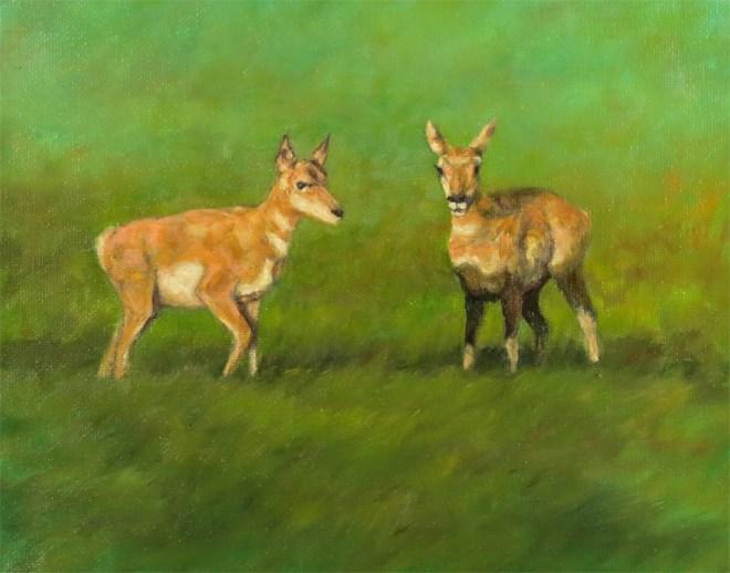 """""""Seeing Double"""" original fine art by Carol Zirkle"""