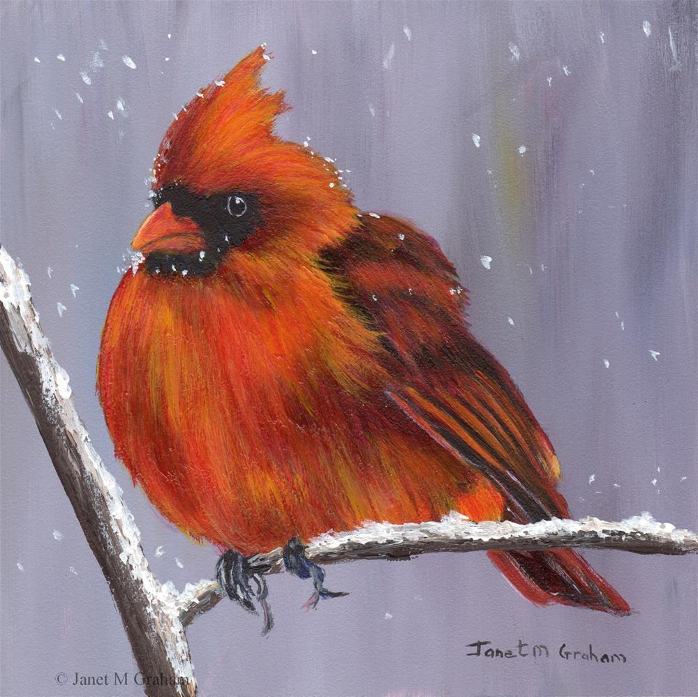 """""""Winter Cardinal"""" original fine art by Janet Graham"""