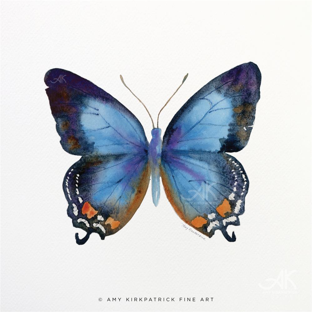 """""""#80 Imperial Blue Butterfly #0390"""" original fine art by Amy Kirkpatrick"""