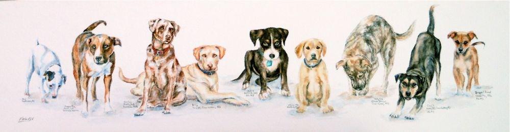 """Pound Puppies & Road Dogs"" original fine art by Vicki Wood"