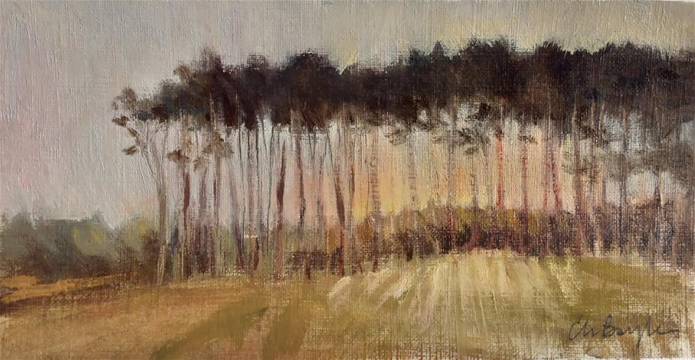 """Sunrise in the pine forest"" original fine art by Christine Bayle"