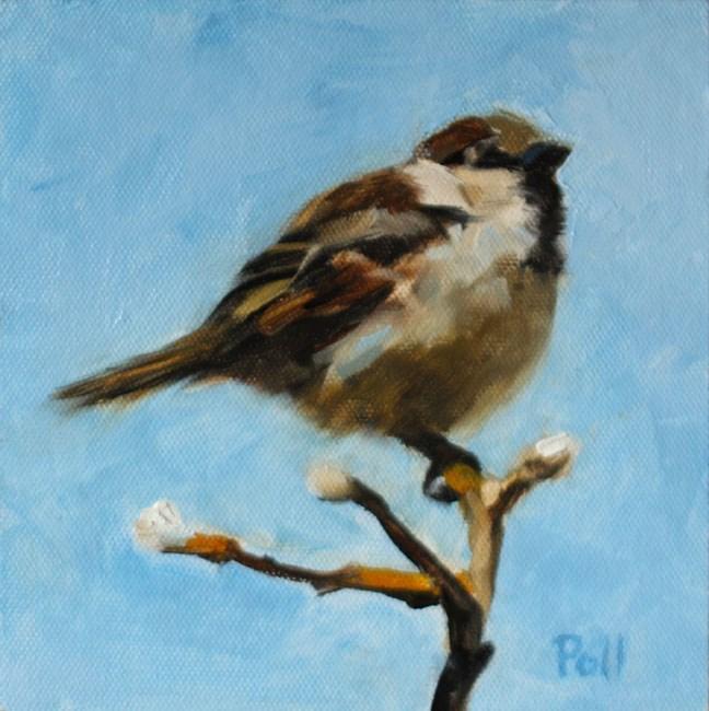 """""""Spring Sparrow"""" original fine art by Pamela Poll"""