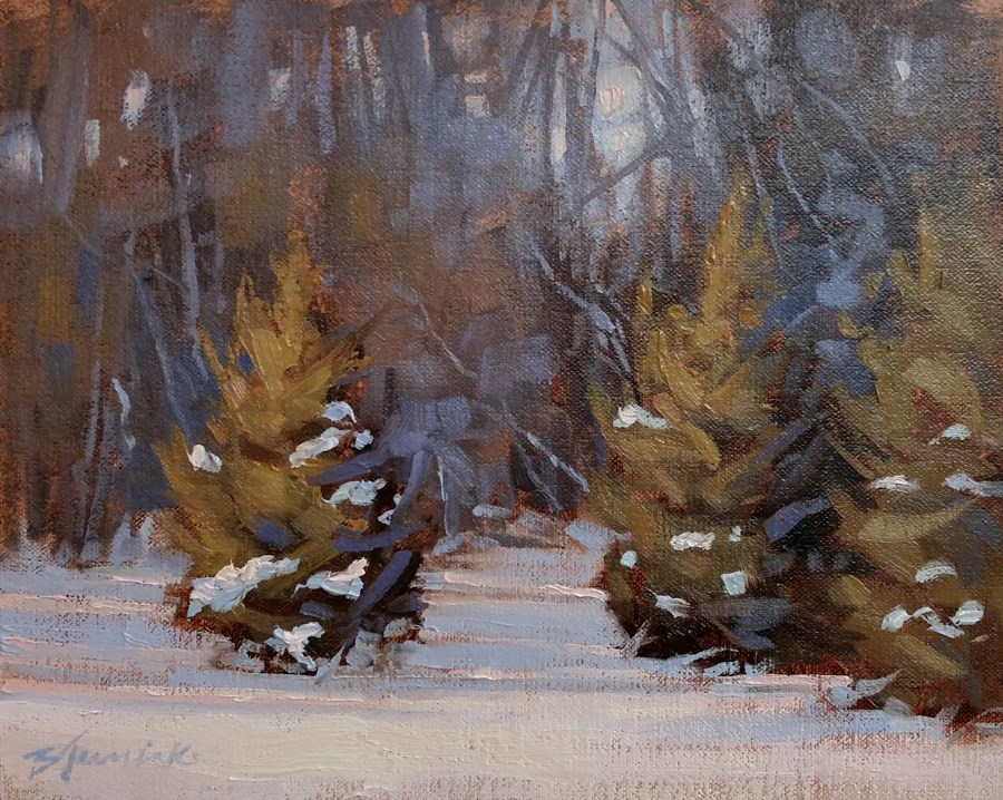"""Soft Winter Light"" original fine art by Barbara Jaenicke"