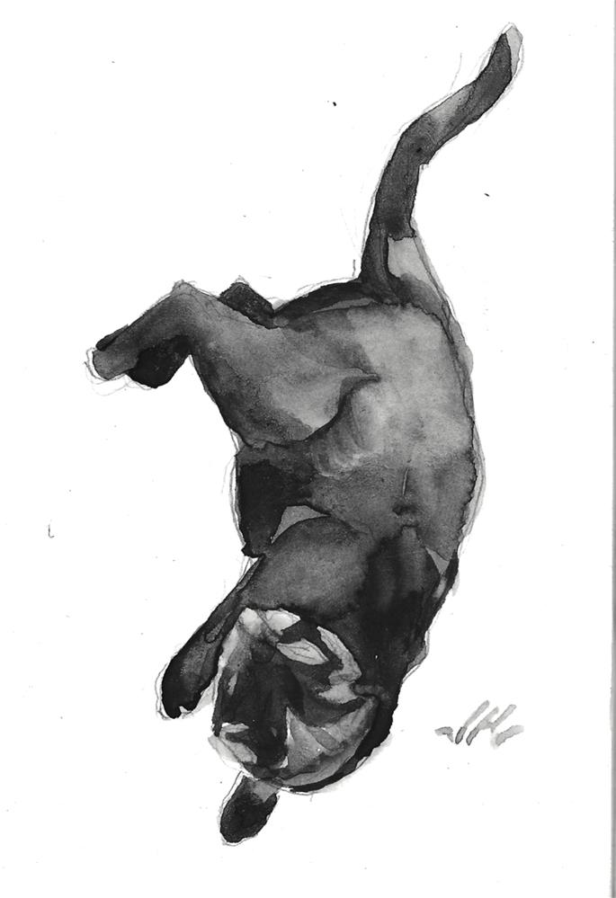 """Daily Cat 130"" original fine art by Jean Krueger"