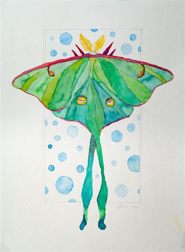 """Luna Moth"" original fine art by Clair Hartmann"