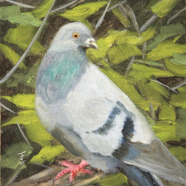 """Staring Match"" original fine art by Jane Frederick"