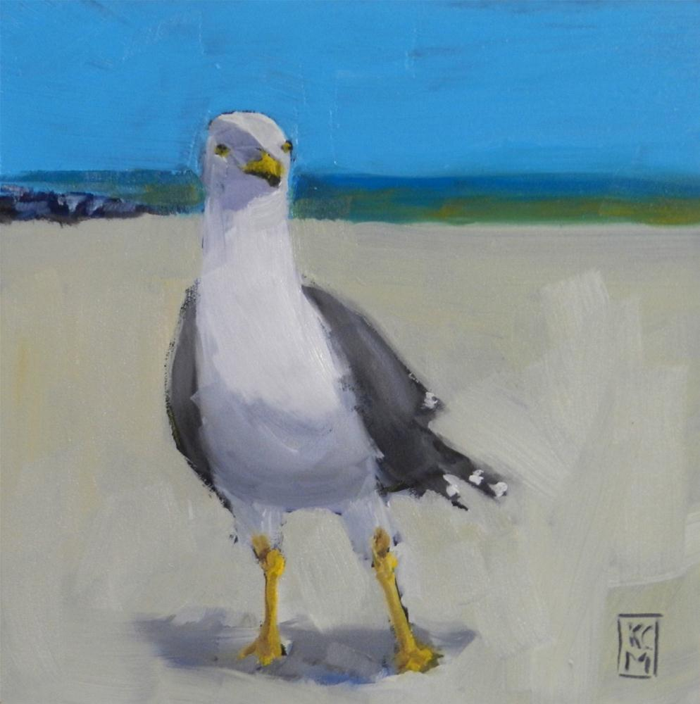 """Happy Guy, 6x6 Oil Painting of a Seagull by Kelley MacDonald"" original fine art by Kelley MacDonald"