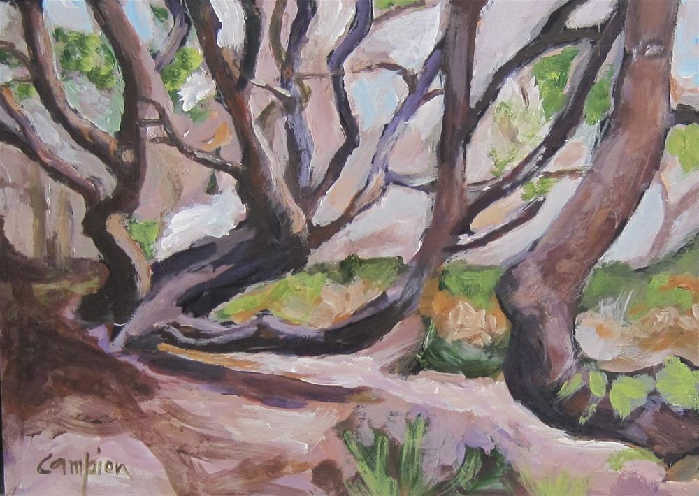 """Climbing"" original fine art by Diane Campion"