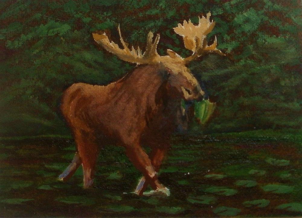 """Solitary Moose"" original fine art by William W. Hoyt"