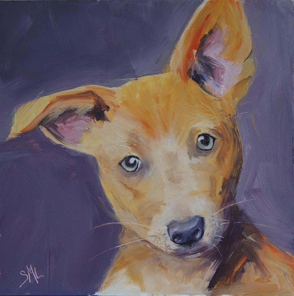 """""""Leoni Zony"""" original fine art by Sheila Marie"""