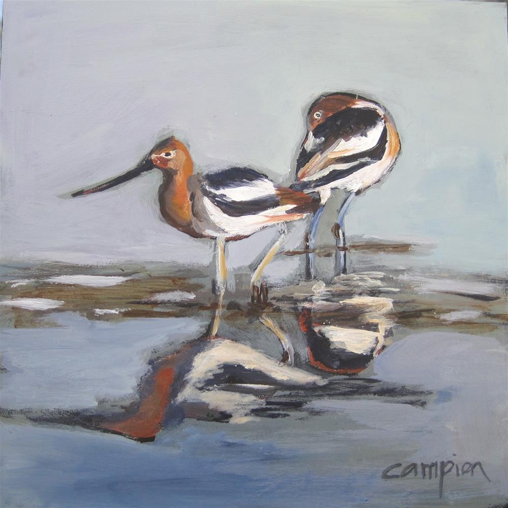 """American Avocets"" original fine art by Diane Campion"